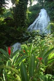 Jamaica-Falls-2