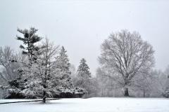 Winter-101