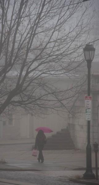 Umbrella-in-Fog-2