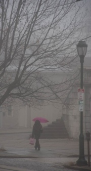 Umbrella-in-Fog-2