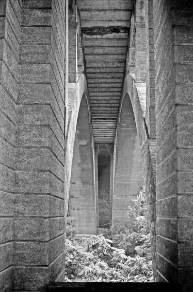 Walnut-Lane-Bridge-2