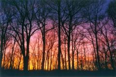 Sunset-over-the-Wissahickon-2